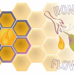 Thehoneyflower